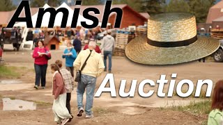 Amish Auction - Eagle Valley 2016