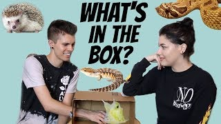 WHAT'S IN THE BOX CHALLENGE! | Feat. Taylor Nicole Dean + All of Her Animals