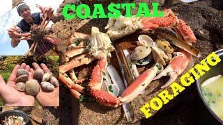 Coastal Foraging , Spider Crab , Venus Clams, Razor Clams / Cooking on A Beach