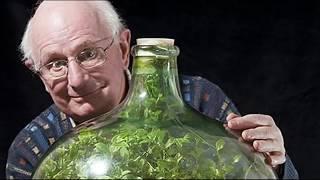 50 летний сад в закупоренной бутылке - удивительно!