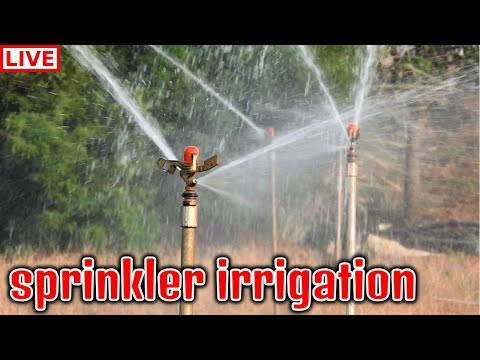 अब खेतों मैं होगी बारिश Amazing Sprinkler Irrigation System in India