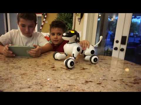Puppy Smart - Robot Dog for Kids (Voice, Touch & App Features)