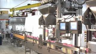 Parsons-Eagle Triplex Pre-Made Bag Filling Line for Pet Food