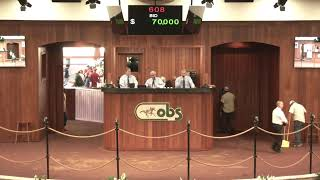 OBS April 2019 Two-Year Olds in Training Sale, Day 2