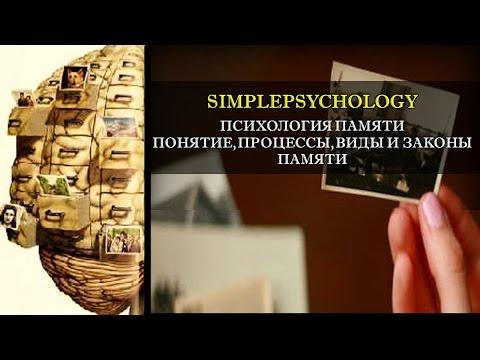 Психология памяти. Понятие, процессы, виды и законы памяти.