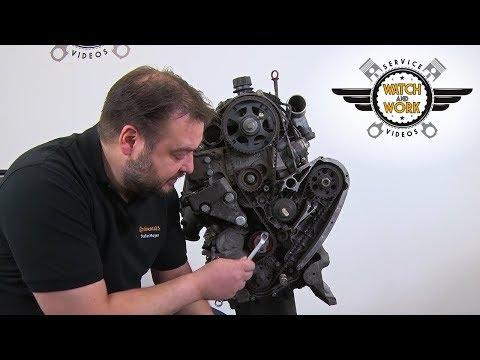 [DE] Watch and Work -Fiat Ducato 2.3l 88kW