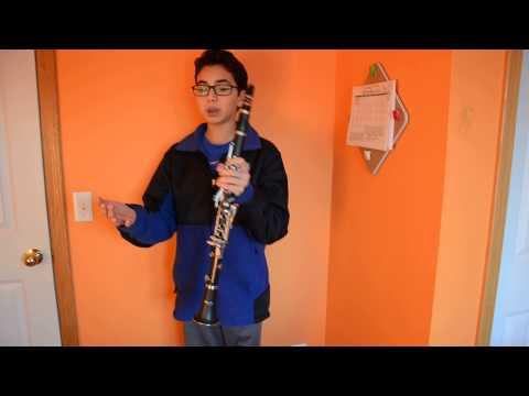 Mendini Bb Clarinet: REVIEW