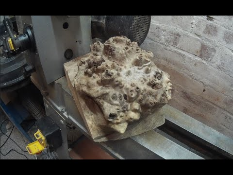 Woodturning - The Old Oak Burl