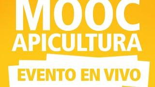 MOOC Apicultura #6 Especial de Abejas Nativas
