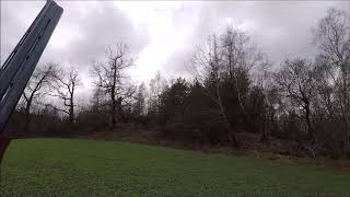 Pheasants Hunting In Czech Republic 07 12 2018