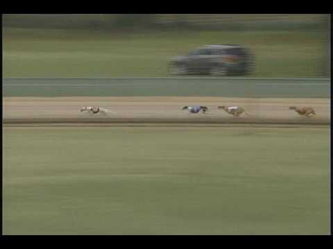 Race 48