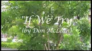 If We Try (Don McLean ukulele cover)