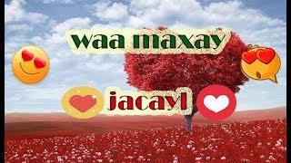 qof ku jecel sidee lagu gartaa - 免费在线视频最佳电影电视
