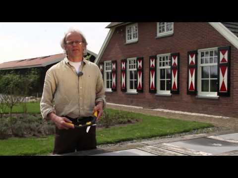 Hendrik Jan 440 mm buxusschaar