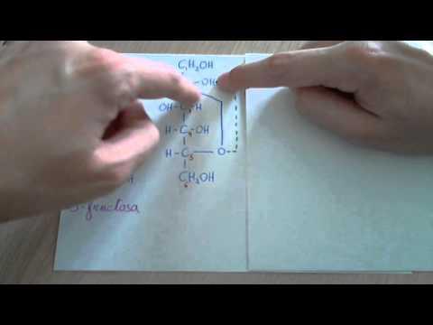 De silicio los anillos magnéticos para el adelgazamiento las revocaciones