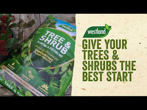 westland tree and shrub compost Video