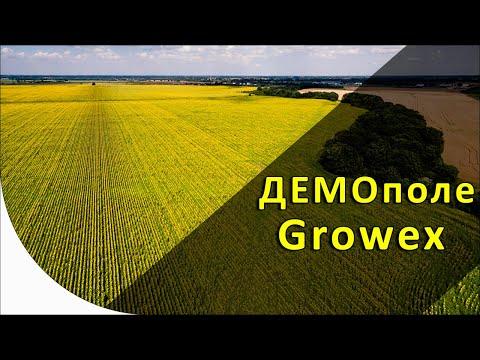 Growex на ДЕМО поле. Посевная 2019