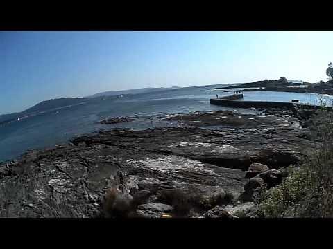 Pesca de Lisas en galicia
