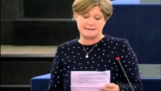 Felszólalás Európa határainak védelmében