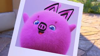 Sunny Bunnies | Taking The Cutest Picture 🐽  | SUNNY BUNNIES COMPILATION | Cartoons for Children