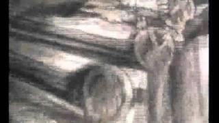 Video Přírody pláč