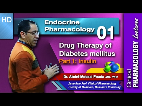 Typ-1-Diabetes Phytotherapie