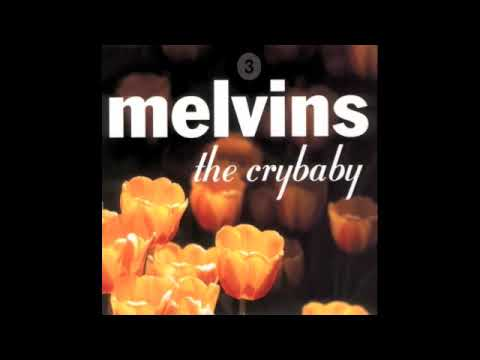 Smells Like Teen Spirit (Song) by Melvins