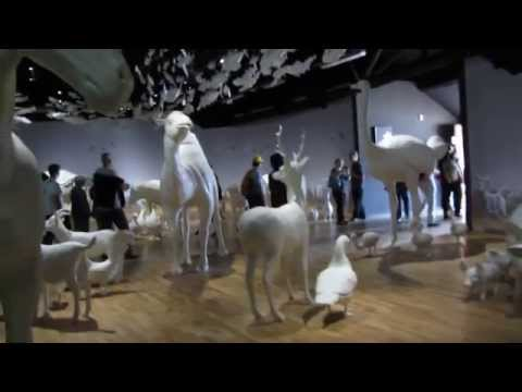 Preview video Animali realizzati per padiglione zero expo 2015