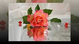 "МИР ОТРАЖЕНИЙ!.. Натюрморты, цветы...Эдгар Туниянц ""Фантазия №21"""