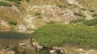 Lacul Gugu - Munţii Godeanu