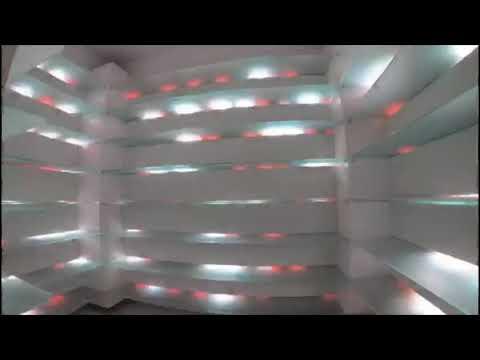 Digital LED Glasregal