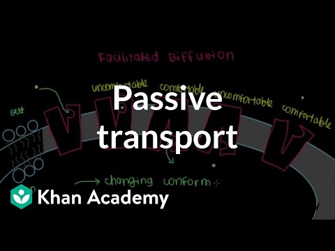 Passive Transport by Facilitated Diffusion (video) Khan Academy