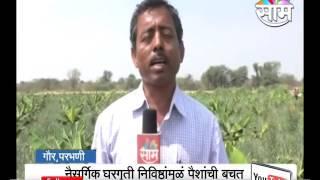 Zero Budge Natural Banana Farming Model Developed By Keshav Rahegaonkar