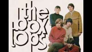 "The Box Tops   ""Neon Rainbow"""