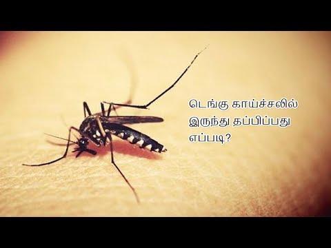 How to escape from dengue fever?