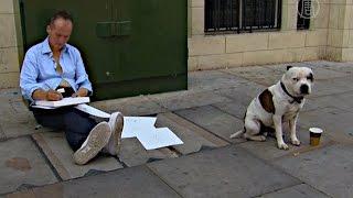 Смотреть онлайн Собака спасла бездомного от нищеты