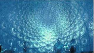 Internal Mantra - (Tool-Shpongle + Younger Brother Remix) Part 5