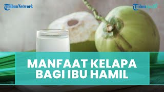 5 Manfaat Minum Air Kelapa Muda untuk Ibu Hamil, Jaga Pertumbuhan Janin hingga Mencegah Asam Lambung