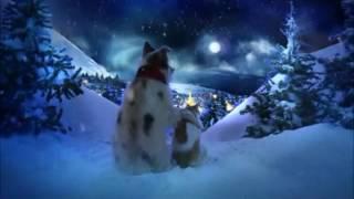 Musik-Video-Miniaturansicht zu Christmas Song Songtext von Chris Norman