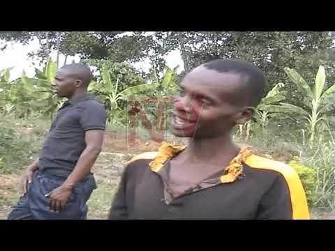 EKIWAMBA BAANA : Waliwo akwatiddwa e Mubende