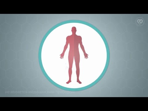 Разновидность гельминтов и их лечение