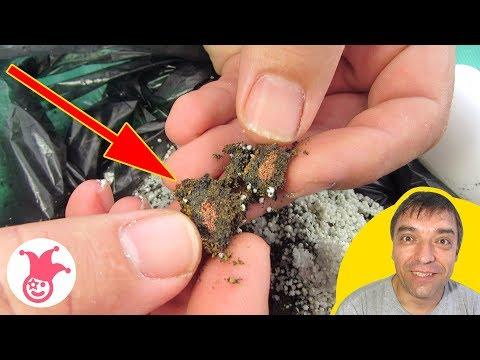 ✅ Из чего сделан фильтр и минерализатор обратного осмоса / Приколы