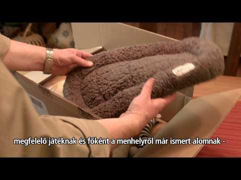 Krónikus prosztatagyulladás tamsulosin