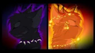 коты воители:день ночь
