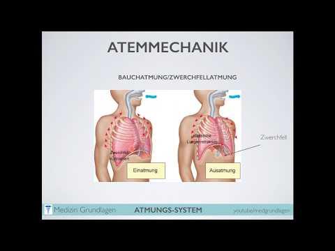 Die Schmerzen im Hals und in der Kehle rechts