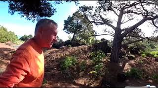 Тенерифе 360 VR видео: Завтрак по дороге в Garachico