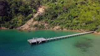 Queen Charlotte Sound (Totaranui), New Zealand