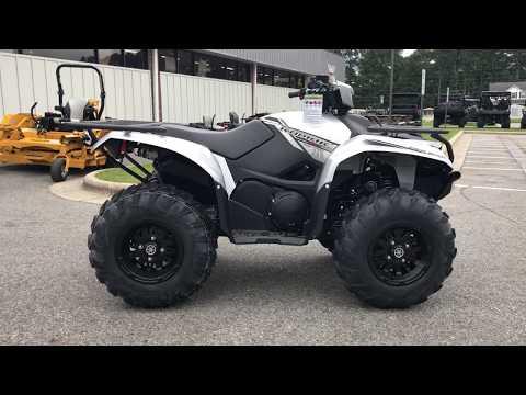 2018 Yamaha Kodiak 700 EPS SE in Greenville, North Carolina - Video 1