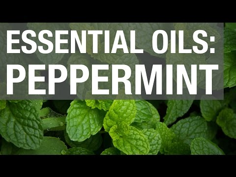 Essential Oils: Peppermint