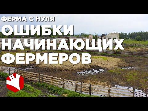 , title : 'Фермерское хозяйство с нуля | Ошибки начинающих фермеров | Мясное животноводство